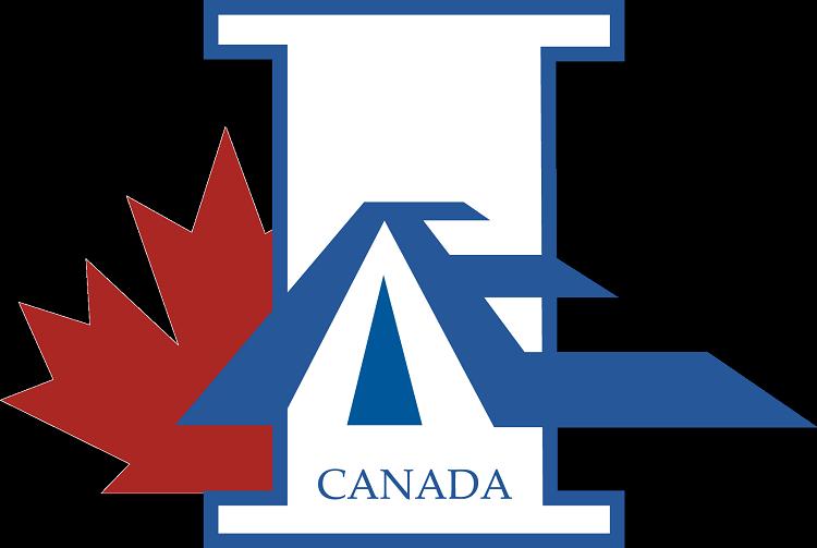 IAAE logo